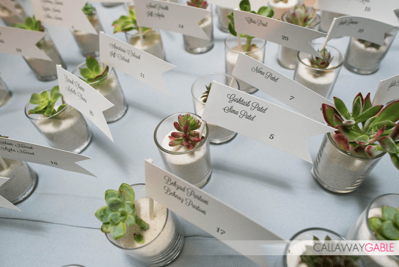 Modern succulent wedding favors and escort cards in sand
